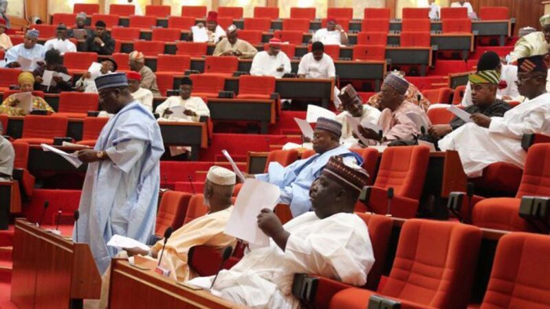 Why is lawmaking so expensive in Nigeria