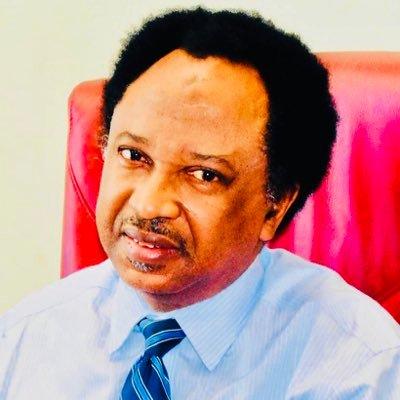 Shehu Sani to FG: 'Seek advice of the youths before you disburse that N74bn'