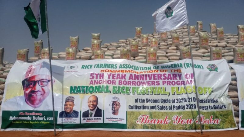 CBN flags off 2020 wet season harvest aggregation for rice farmers