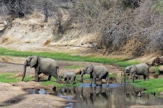 Exploring the wonders of nature in Taraba State Nigeria (In Photos)